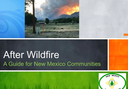 After Wildfire: Planning for the Next Big One (For Download)