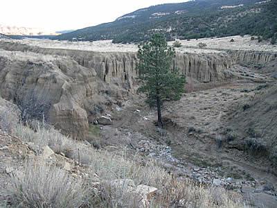 cebolla canyon
